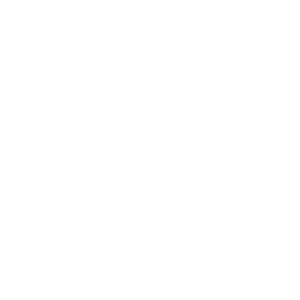 Logo for NAPIA
